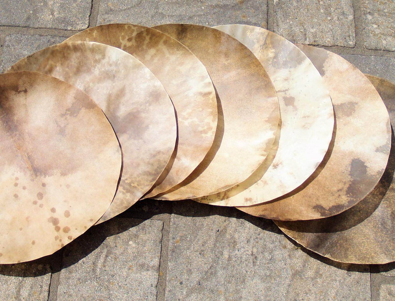 Djembe Ziegenfell 55cm  drumskin drumhead trommelfell trommelhaut